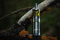 Dvarw Steam Tuners & Corinne Mechanical Mod